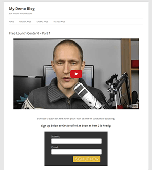Low budget setup: free WordPress theme, YouTube video & Aweber form.