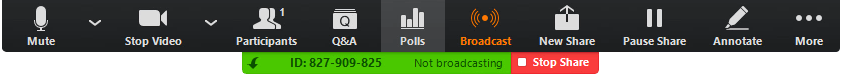 Options ribbon during a live call